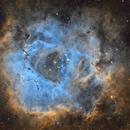 Caldwell 49 Rosette Nebula,                                Kesphin