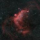 Seagull Nebula,                                Johannes Bock