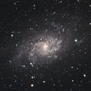 The Triangulum Galaxy, M33,                                Steven Bellavia