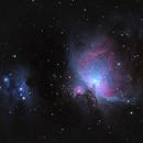 Orion Nebula and Running Man,                                Gregg