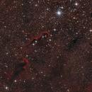 IC 1396 - Elephant's Trunk nebula,                                Jonas Illner