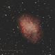 M1 Crab Nebula,                                David Newbury