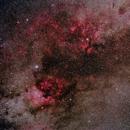 Nebulae in Cygnus,                                Adrian Drąg