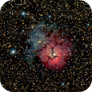 M-20 (NGC-6514) Nebula in Sagittarius,                                Stargazer66207