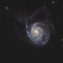 M 101 - NGC 5457 - Pinwheel-Galaxy,                                Dagolaf
