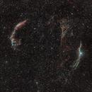 Cygnus Loop Wide Field,                                star-watcher.ch