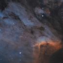 IC 5070 - Pelican Nebula,                                Victor Van Puyenbroeck