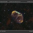 Crescent Nebula,                                Radek Kaczorek