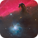 Horsehead Nebula cropped and refined,                                Anthony Quintile