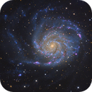 M101 | The PinWheel Galaxy,                                Kevin Morefield