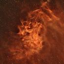 Flaming Nebula - first shot with TEC140FL,                                Alex Pinkin