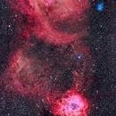 The Nebulas of the Unicorn,                                Alan Dyer