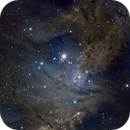 Cone Nebula,                                Seth