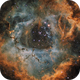The Rosette Nebula,                                Ruben Barbosa
