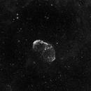 Crescent Nebula (NGC6888),                                Wenhan Guo (Danny)
