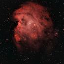 NGC2174 Narrowband,                                Don Holmgren