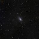 NGC 2403,                                Muhammad Ali