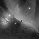 IC 434 - La tête de cheval,                                Nicolas Aguilar (Actarus09)