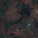 IC 1396 - Elephant Trunk Nebula,                                Brandon Eady