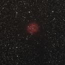 IC5146  Cocoonnebula,                                Matthias
