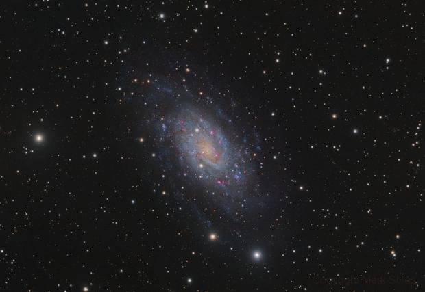 NGC2403,                                Mark Stiles (Nort...