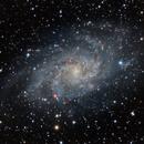 M33 - Triangulum Galaxy - DSLR + Ha,                                Chris Massa