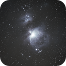 M42,                                Xynco