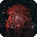 NGC 2174 The Monkey is watching you,                                Stephan Linhart