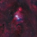 NGC2264: Christmas Tree Cluster,                                Alberto Ibañez