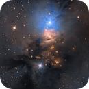 NGC1333 nebula,                                Pavle Gartner