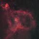 Heart Nebula IC1805,                                Walter Wilhelm