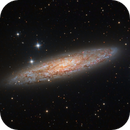 The Sculptor Galaxy (NGC 253),                                DiscoDuck