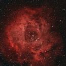 Language of the Cosmos - Rosette Nebula,                                SicIturAdAstra
