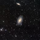 M81-82 in largo campo,                                Domenico De Luca