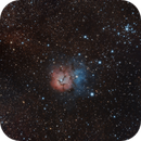 Trifid Nebula,                                aapablaz