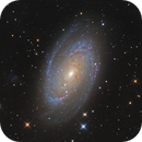 M81 Luminance test,                                Albert van Duin