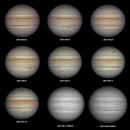 Jupiter in September 2021, T250 f/4  /  ASI385  /  AZEQ6,                                Pulsar59