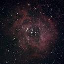 Rosette Nebula,                                Jesse Krautwurst