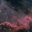 Cygnus Wall,                                xordi