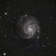 M101,                                Jganz