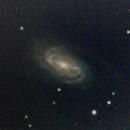 NGC 2903 - 5 gennaio 2013,                                Giuseppe Nicosia
