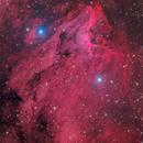 Pelican nebula,                                Giovanni Paglioli