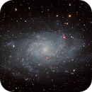 M33 - Triangulum Galaxy,                                Brian Peck