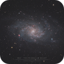 Messier 33 - The Triangulum Galaxy,                                Christophe Perroud