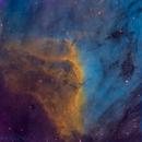 Pelican Nebula (Hubble Palette),                                Miles Zhou