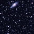 NGC 7331 (Deer Lick Group) and Stephan's Quintet Widefield in Pegasus,                                astrobillbinMontana