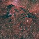 Observatory First Light - NGC6188 & NGC6164,                                Richard Muhlack