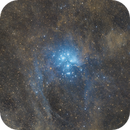 The Pleiades(M45) and the surrounding dust,                                AWanderer