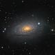 M63 Sunflower galaxy,                                Lukasz Socha