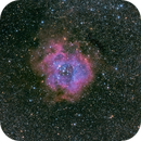 Rosette Spacecat 21x3min,                                Zak Foreman